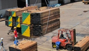 LOADING DISCHARGING SAWN TIMBER 2