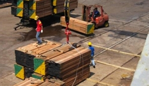 LOADING DISCHARGING SAWN TIMBER 3